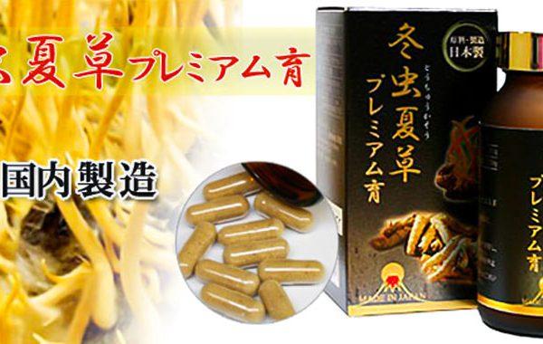 dong-trung-ha-thao-ably-touchukasou-cordyceps-capsule-230-vien-sieu-thi-nhat-ban-japana-3